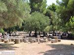Olympia (Elia) Griekenland - De Griekse Gids - Foto 12 - Foto van De Griekse Gids